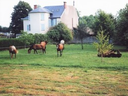 arriver à cheval à Vichy